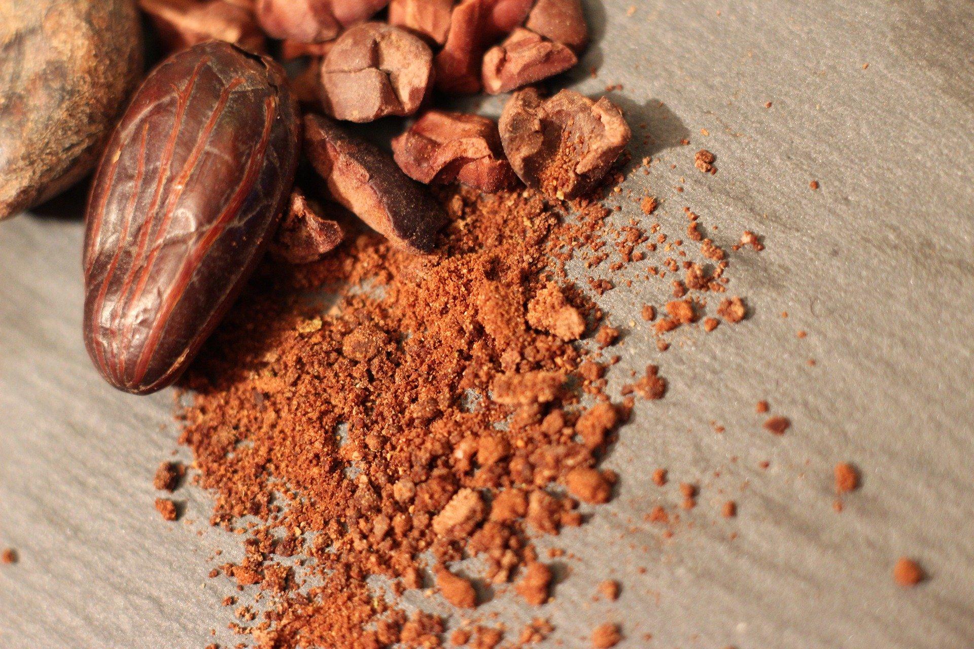 Cocoa and Cocoa Powder